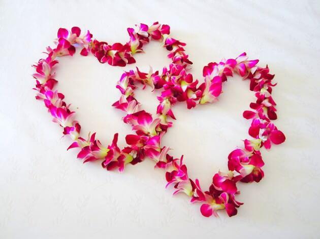 İhtiyacımız Olan Tek Şey Sevgi